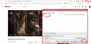 download video menggunakan add ons